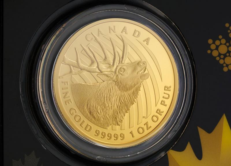 2017 1 oz Canadian Bellowing Elk