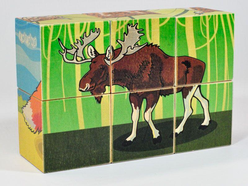Wooden blocks Wild animals