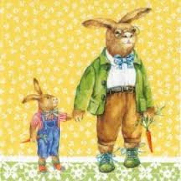 Salvrätikud 33x33 cm 20 tk kompl Bunny family yellow