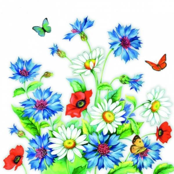 Salvrätikud Ambiente Cornflower 33x33cm 20tk