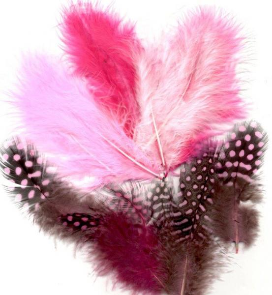 Feathers Marabou&Guinea mix pink 18pcs