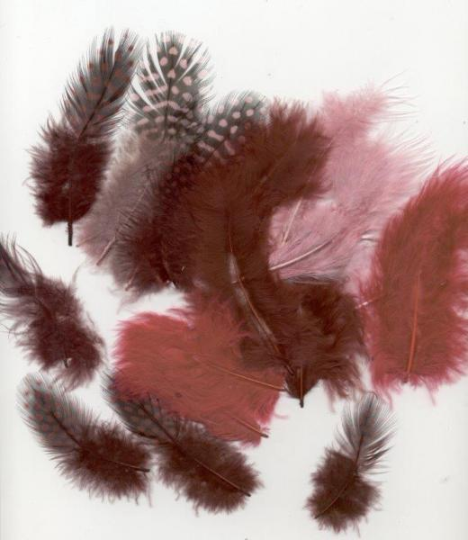 Feathers Marabou&Guinea Wine 18pcs