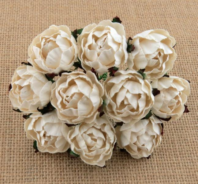 Mixed Engligh roses ivory MKX-269-30mm 5tk