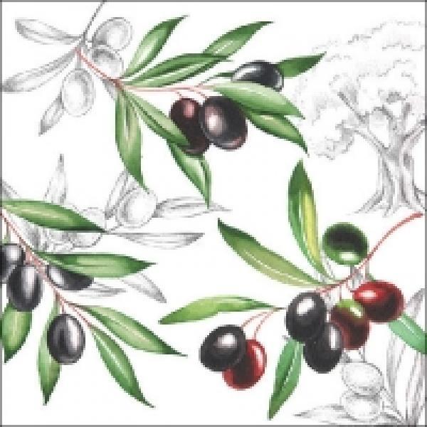 Salvrätikud Ambiente olives 33x33cm 20tk