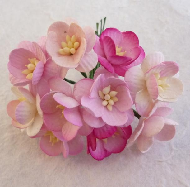 Mixed pink tone cherry blossoms MKX-039 5tk