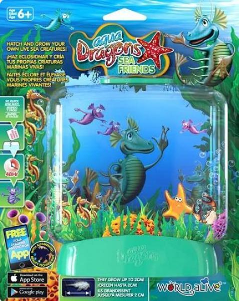 Aqua Dragons DRAAKONITE KASVATAMINE