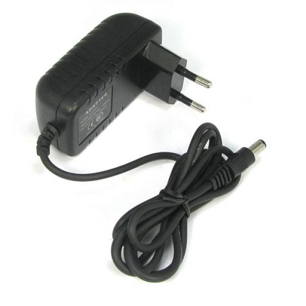 Ride on car charger 12V 1000mA