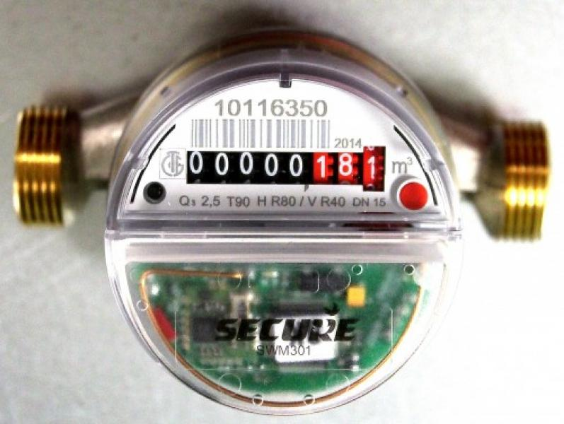 SWM301