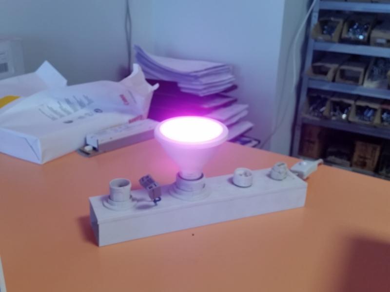 LED lamp taimedele 12W, 360lm, E27