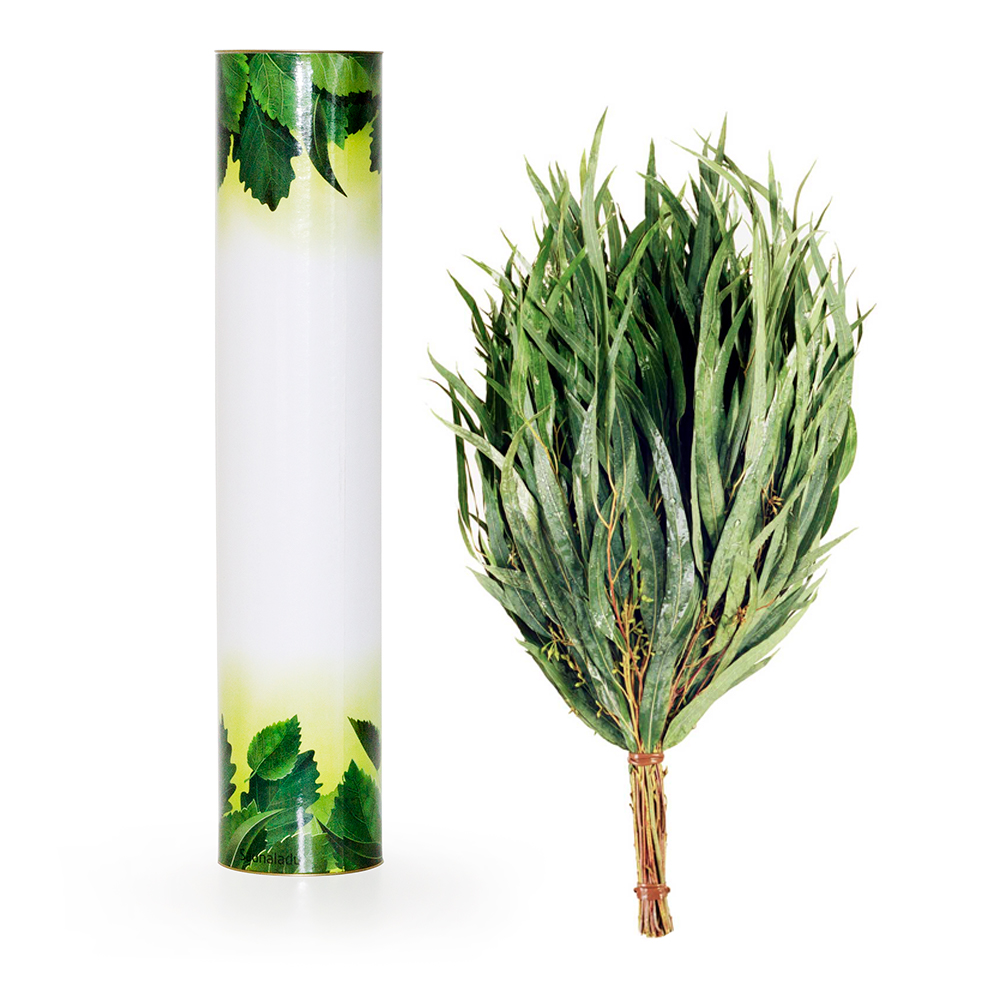 Eukalyptusreisig in der Geschenkbox